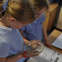 Moon rocks visit Menston Primary School